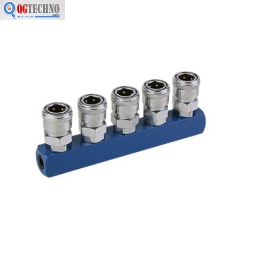 Bộ đầu nối nhanh chia 5 đầu ống hơi khí nén bằng thép Dannio