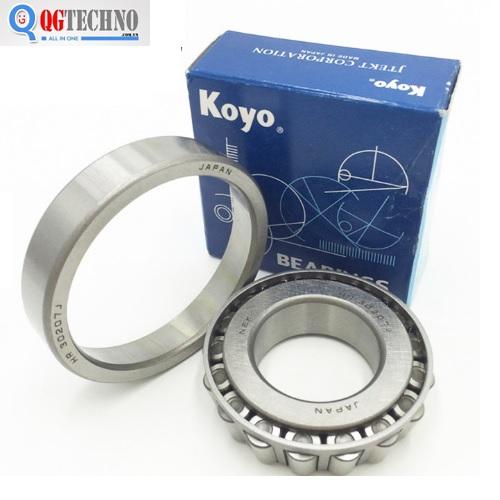vong-bi-bac-dan-con-koyo-32224